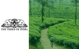 Microland sponsors Covid support website for the Nilgiris in Tamil Nadu, India