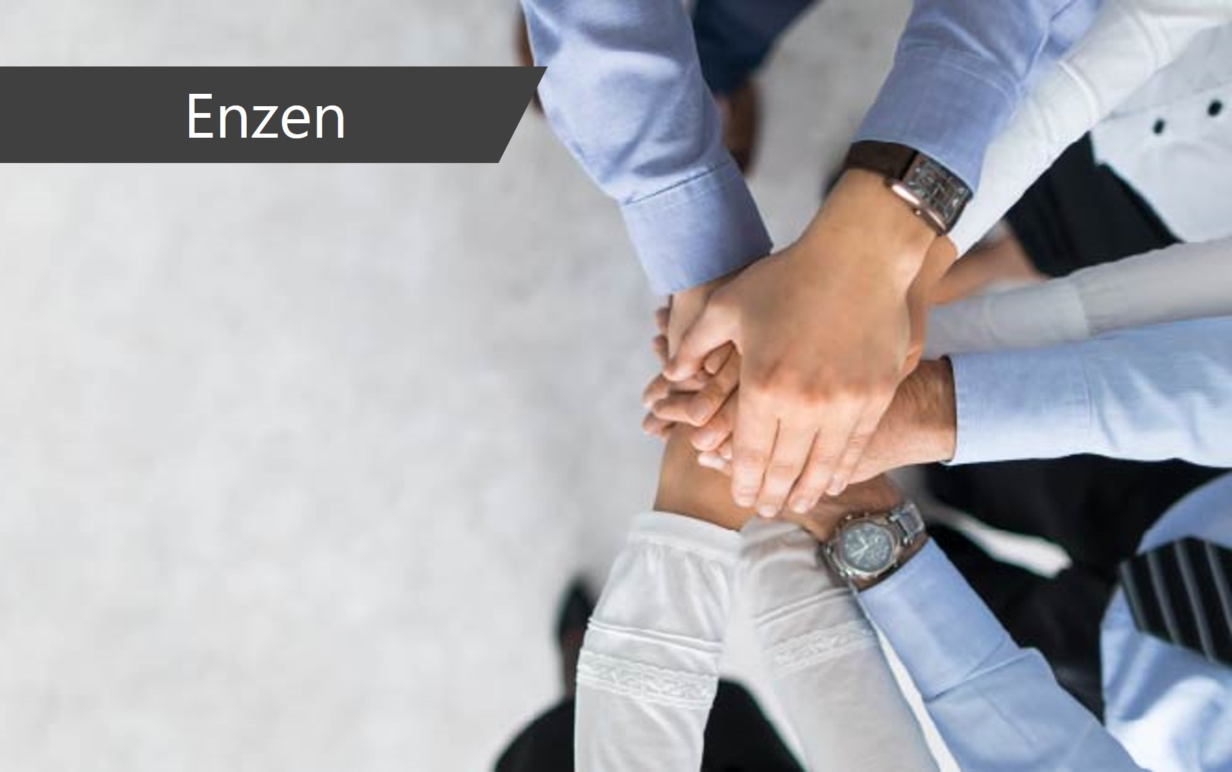 Enzen and Microland announce a global strategic partnership